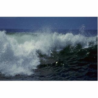 Escenas del mar esculturas fotográficas