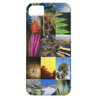 Escenas icónicas de la naturaleza de Nueva Zelanda iPhone 5 Fundas
