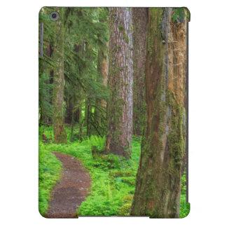 Escénico de bosque del viejo crecimiento funda para iPad air