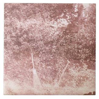 Escoba y espada, 1842 (foto de b/w) azulejo cerámica