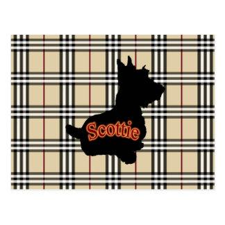 Escocés con el fondo del tartán del moreno postal