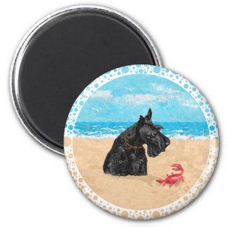 Escocés curioso en la playa imán redondo 5 cm