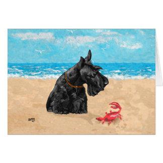 Escocés curioso en la playa tarjeta de felicitación