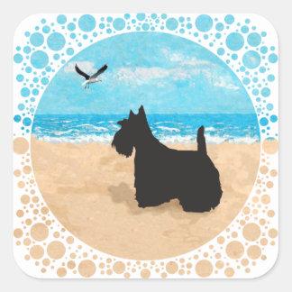 Escocés en la playa con la gaviota pegatina cuadrada