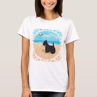 Escocés en la playa con la gaviota playera