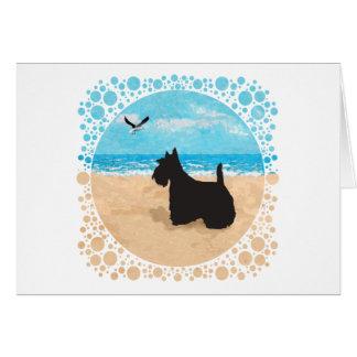 Escocés en la playa con la gaviota felicitación