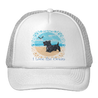 Escocés en la playa gorras