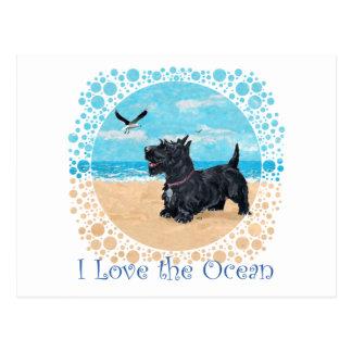 Escocés en la playa postales