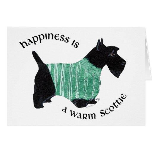 Escocés en un suéter rayado verde tarjeta