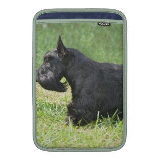 Escocés lindo Terrier Fundas MacBook