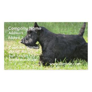 Escocés lindo Terrier Tarjeta De Visita