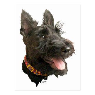 Escocés sonriente Terrier Postal