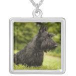 Escocés Terrier Colgante Personalizado