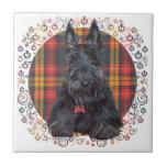 Escocés Terrier en el tartán Teja