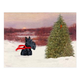 Escocés Terrier en invierno Postal