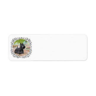 Escocés Terrier en luz del sol Dappled Etiquetas De Remite