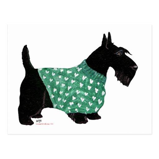 Escocés Terrier en un suéter Postal