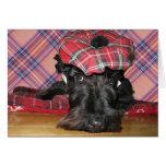 Escocés Terrier en un Tam-o-Shanter Tarjeta