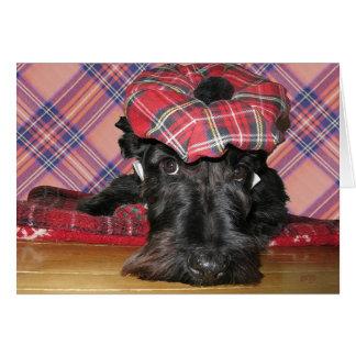 Escocés Terrier en un Tam-o-Shanter Tarjeta De Felicitación