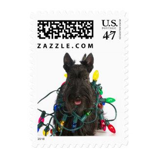 Escocés Terrier enredado en luces de navidad Timbre Postal