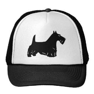 Escocés Terrier Gorro