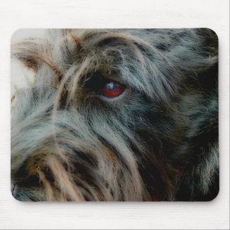Escocés Terrier, negro, cierre encima de la cabeza Tapete De Ratones