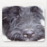 Escocés Terrier Tapetes De Ratones