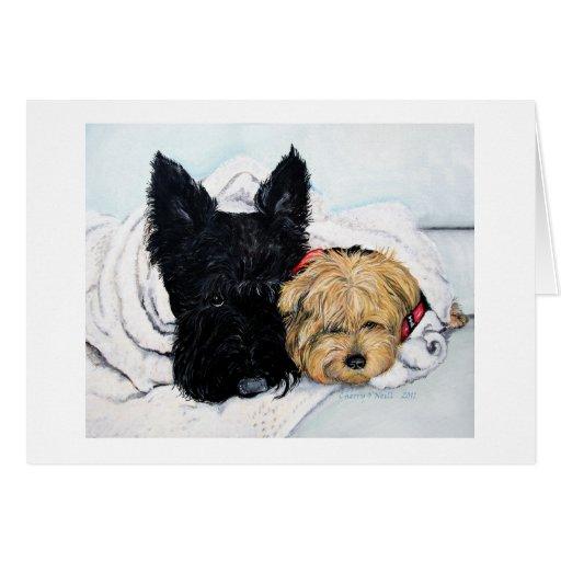 Escocés Terrier y mejores amigos de Yorkie Tarjeta De Felicitación