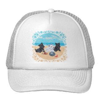 Escocés y perritos de Westie en la playa Gorro De Camionero