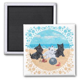 Escocés y perritos de Westie en la playa Imán Cuadrado