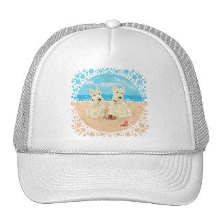 Escoceses de trigo en la playa gorra