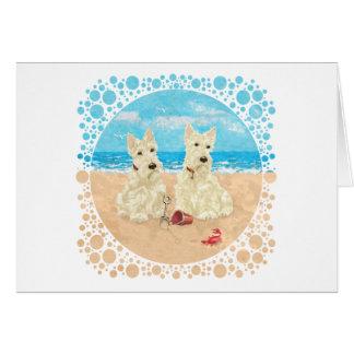 Escoceses de trigo en la playa tarjeta de felicitación