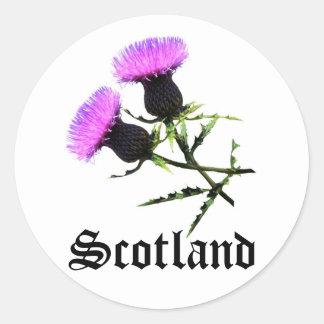 Escocia, cardo pegatina redonda