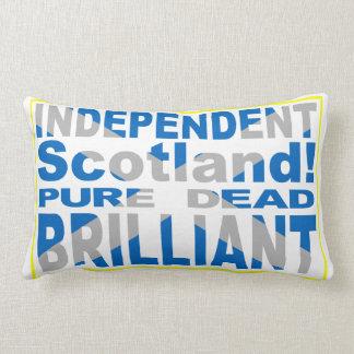 Escocia independiente pura, muerto, brillante almohada