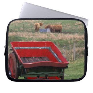 Escocia, isla de Skye, Kilmuir. Animales del campo Mangas Computadora