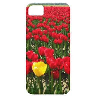 Escoja el tulipán amarillo en un campo de funda para iPhone SE/5/5s
