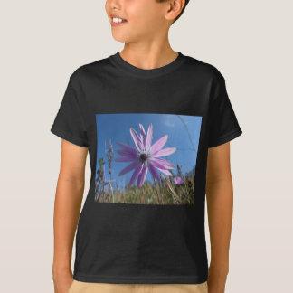 Escoja la flor púrpura de la margarita contra el playera