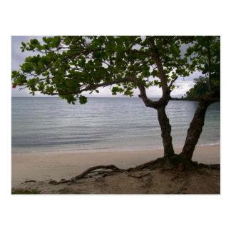 Escondido Beach Postcard