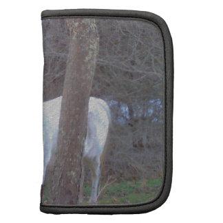 Escondite del caballo planificadores