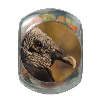 Escondrijos y grietas jarrones cristal