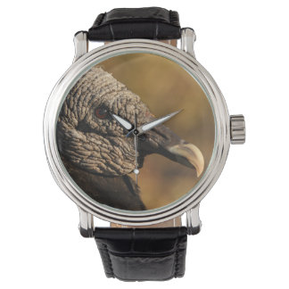 Escondrijos y grietas relojes de pulsera