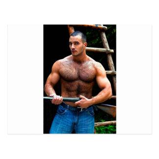 Escopeta: Oso de la caza del oso - pintura origina Tarjeta Postal