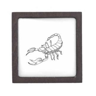 Escorpión Caja De Recuerdo De Calidad