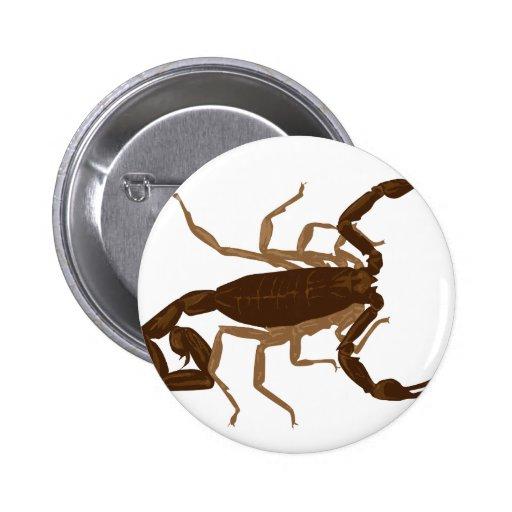 Escorpión de Brown Pin