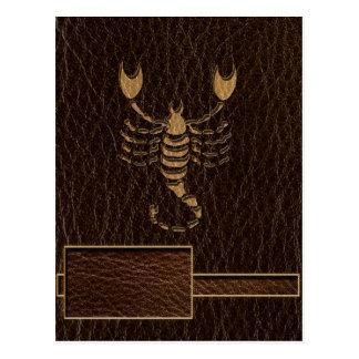 Escorpión de la Cuero-Mirada Postales