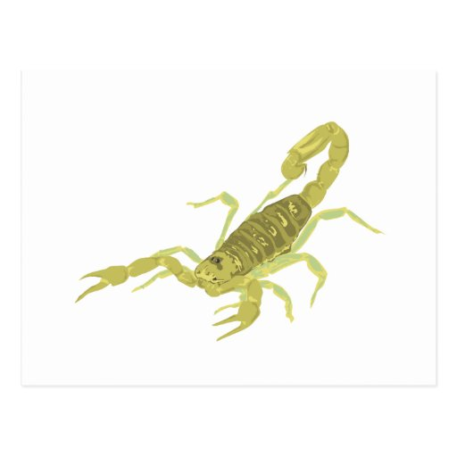 Escorpión de oro tarjetas postales