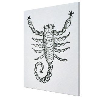 Escorpión (el escorpión) un ejemplo del 'P Impresion En Lona