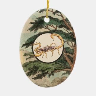Escorpión en el ejemplo del hábitat natural adorno navideño ovalado de cerámica