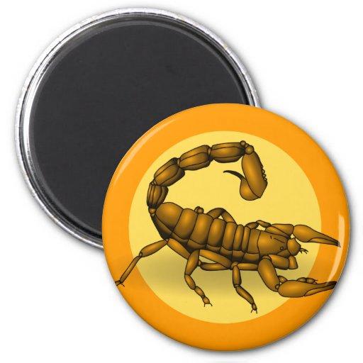 Escorpión Imán Redondo 5 Cm