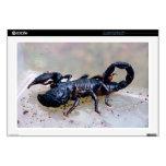 Escorpión negro 43,2cm portátil calcomanía